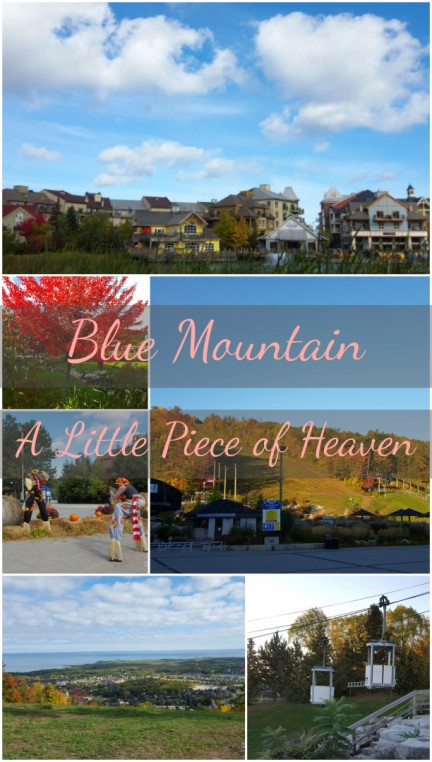 Blue Mountain Fall